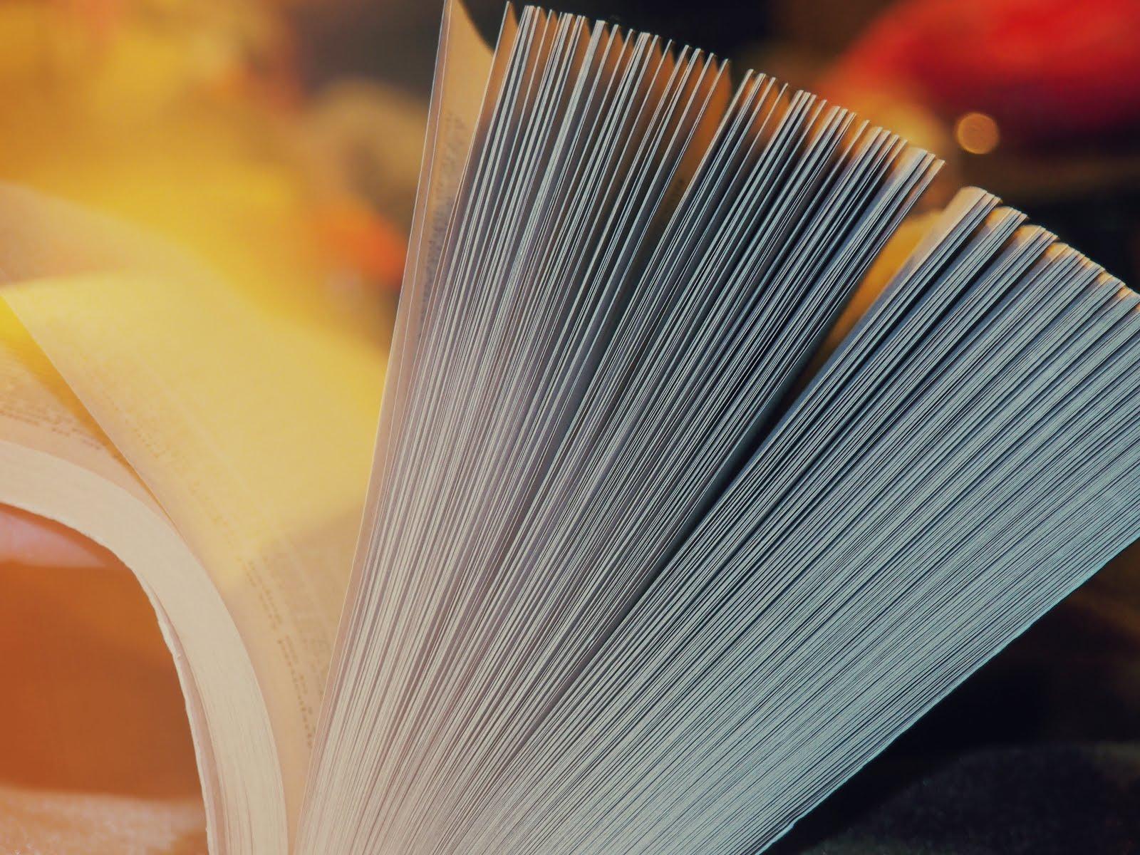 Libro del Cuore - Citazione