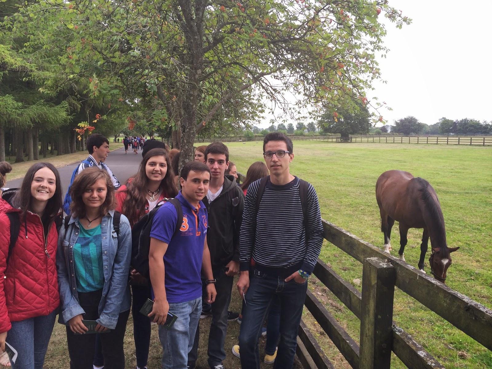 Colegio san jos verano 2013 dalkey irlanda irish for Jardines de poni