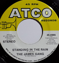 """Standing In The Rain"""