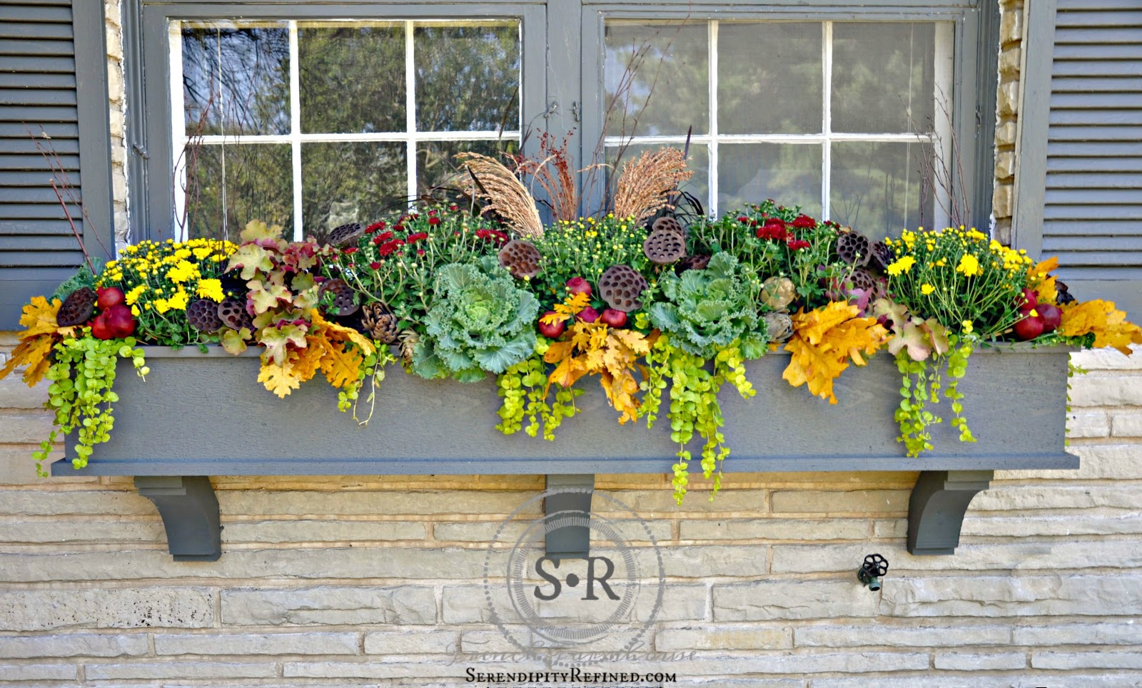 serendipity refined blog fall window box planter. Black Bedroom Furniture Sets. Home Design Ideas