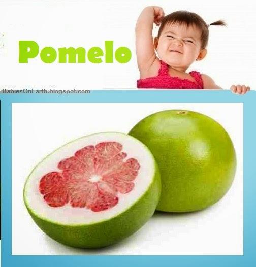 Baby Pomelo