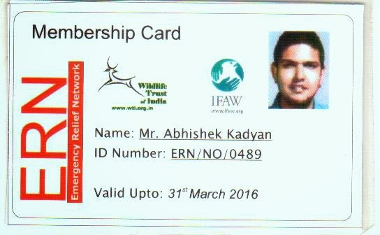 Member, ERN of WTI