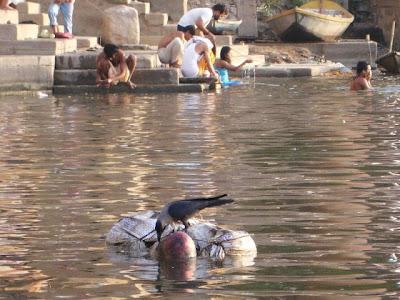 Sisi Lain Kehidupan di India
