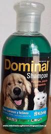 SHAMPOO DOMINAL $ 70.00 + Gastos de envío