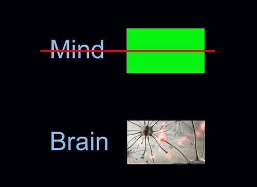 mind brain identity theory vs functionalism