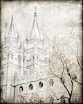 I'm a Mormon.