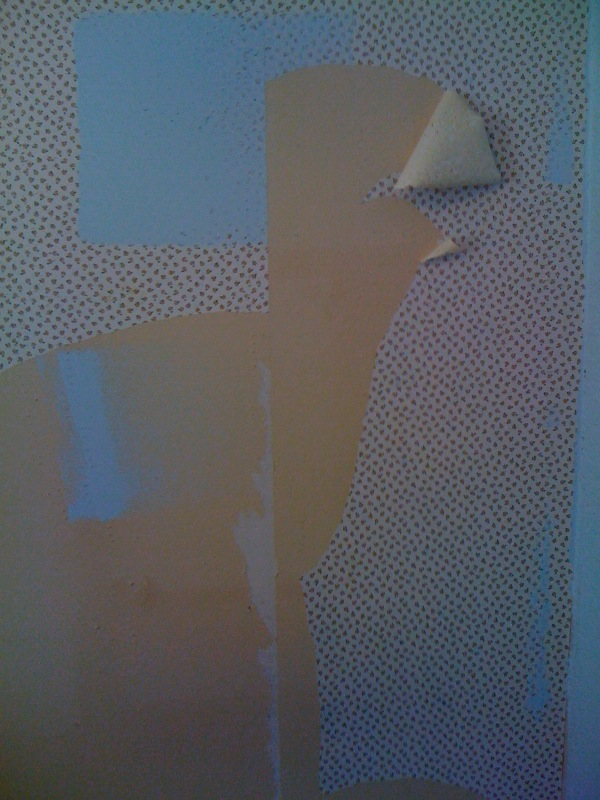 removing wallpaper from drywall saston