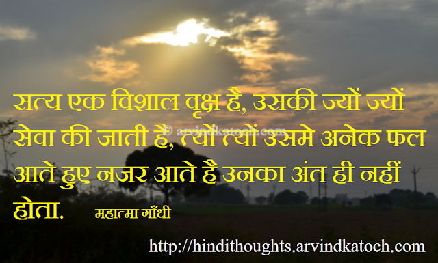 Big Tree, Truth, Mahatma Gandhi, Thought, Quote, Hindi