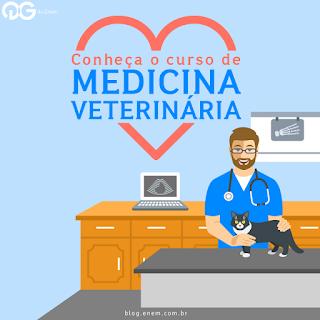 Conheça a grade curricular da faculdade de Medicina Veterinária