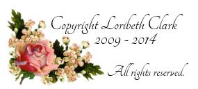 Copyright & Disclosure