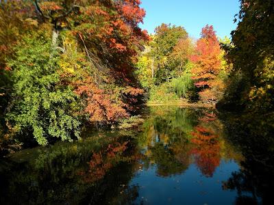 Autumn and Fall Colors Photo 2