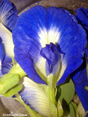 Image: Gokarna Flower
