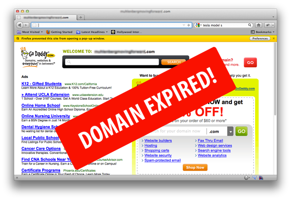 What Happens to Expired Domain Names?