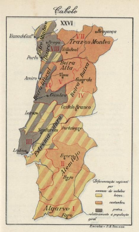 A pigmentação dos portugueses Mapa+da+Cor+do+Cabelo