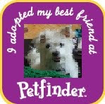 Petfinder