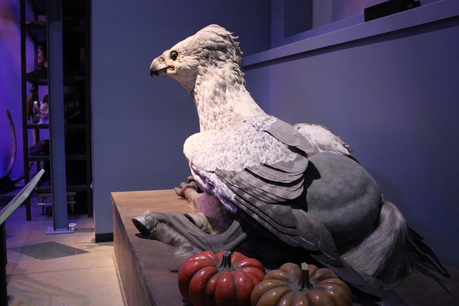 Harry Potter studio tour london buckbeak
