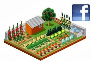 Facebook du jardin communautaire Reboul