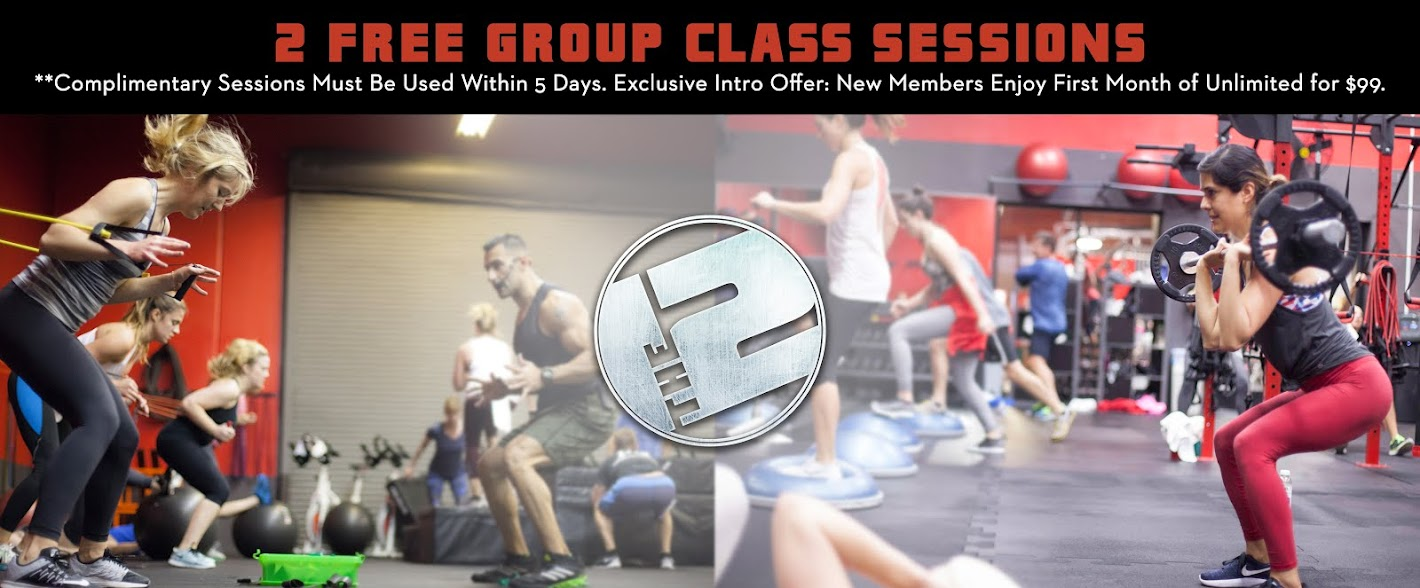 The 12 Group Training + Nutrition