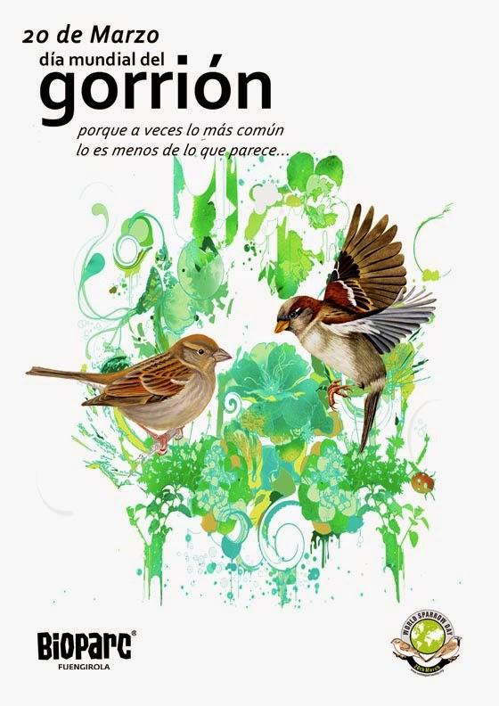 http://www.bioparcfuengirola.es/en/2015/03/16/d%c3%ada-mundial-del-gorri%c3%b3n-2015/