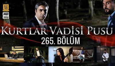 http://thealemdar.blogspot.be/p/kurtlar-vadisi-pusu-265bolum.html