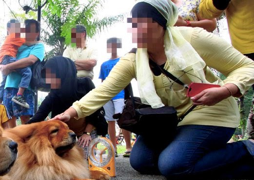 Hukum orang Islam bela anjing Apa kata ulama