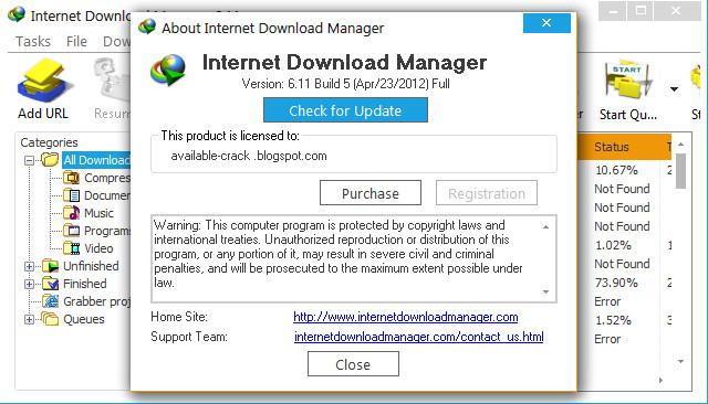Internet Download Manager 5.19 Build 5 serial key or number