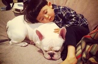 Ảnh cậu bé Nhật bên cún cưng 'đốn tim' dân mạng