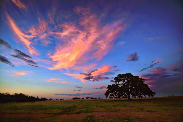 Prairie Sunset I