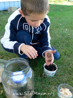 Adding Worms to the worm jar: STEMmom.org