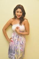 Payal Ghosh Stills