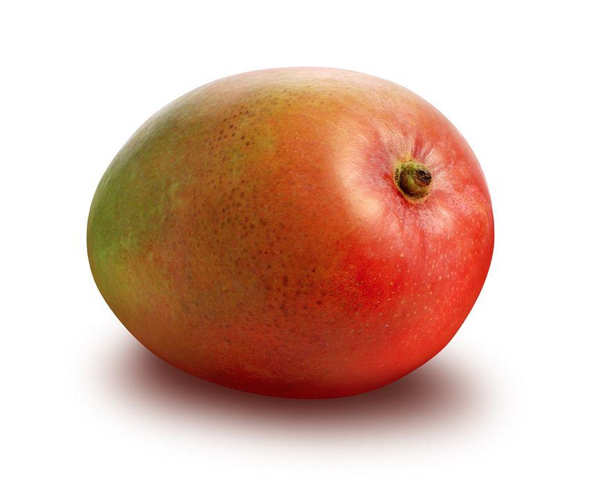 Jak wyhodować mango w doniczce