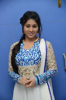 Hamida Pictures at Shahasam seyara dimbaka movie audio release function