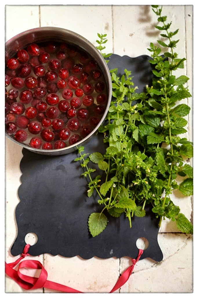Red gooseberry and lemon balm cordial recipe