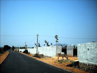 Road to Varadenahalli