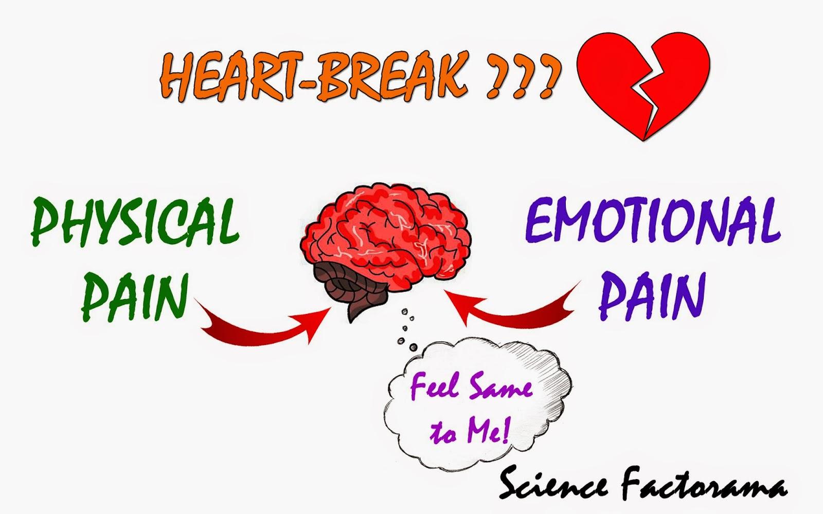 Physical Effects Of A Broken Heart