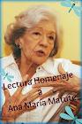 Reto/Homenaje Ana María Matute
