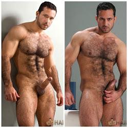Forte e peludo: um senhor macho.