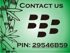 Contact Pin BB