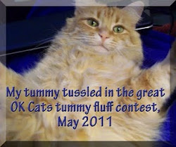 Tummy Contest 2011