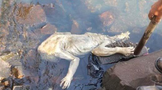 Extrañas criaturas están apareciendo con mas frecuencia alrededor del mundo