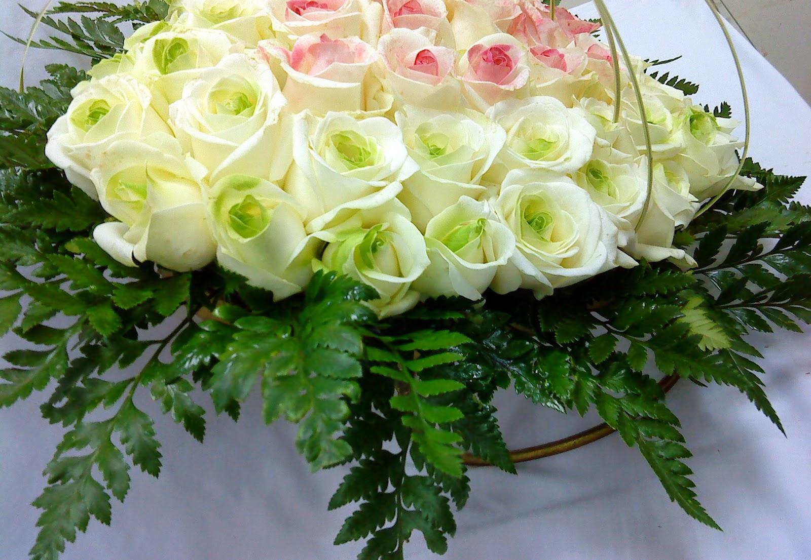 Hoa hông trắng đẹp