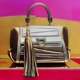 Salvatore Ferragamo Sophia Metallic Bag with Charm Tassel.