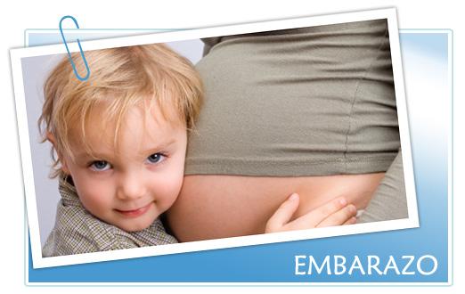 Pregnant etapas en el embarazo for Cuarto embarazo