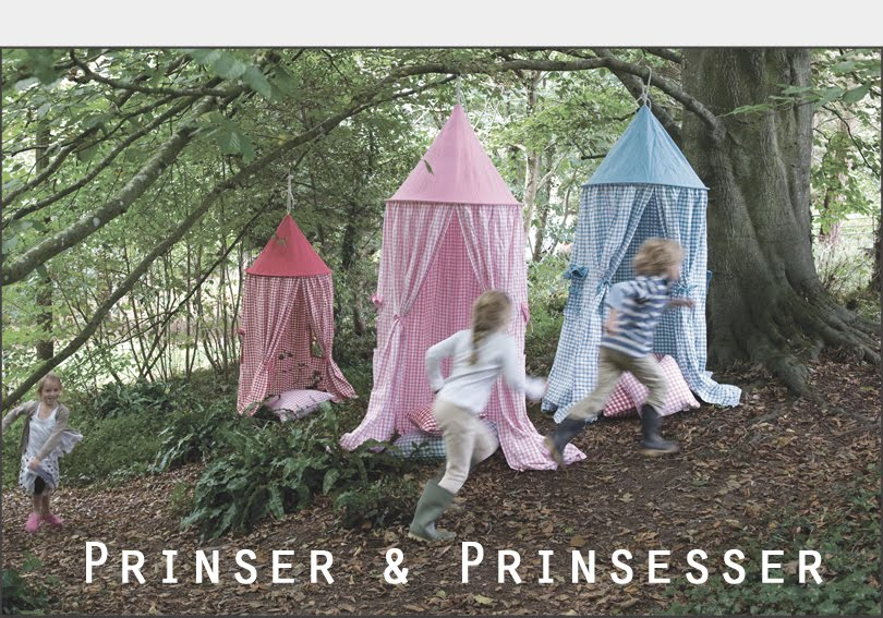 Prinser &amp; Prinsesser