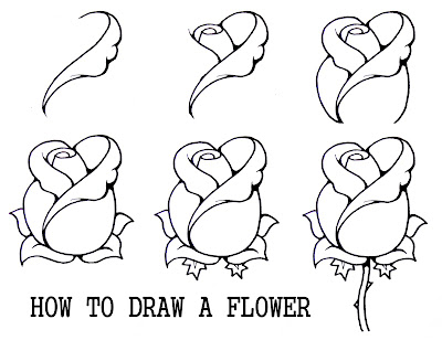 How to Draw a Rose Step by Step Flower