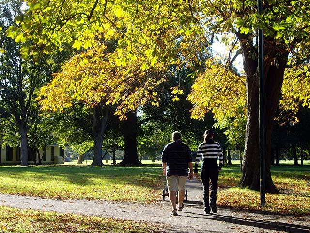 Christchurch : Under my skin Hagley-park