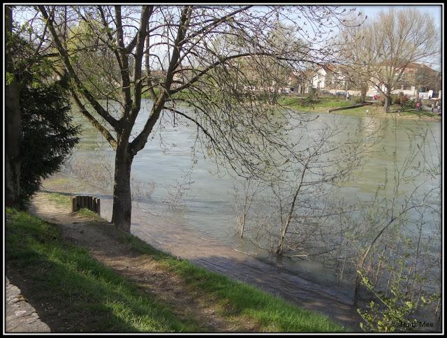 crue de la Marne St Maur des fosses