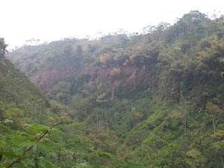 The hills among curug sikopel