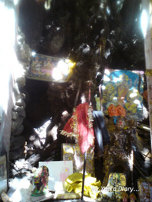 Prayers to be offered here at the base of the Kalpvriksha in Joshimath in Himalayas