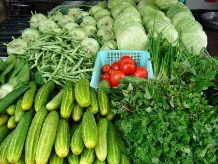 Rau xanh có nhiều chất xơ, giúp giảm cân rất tốt